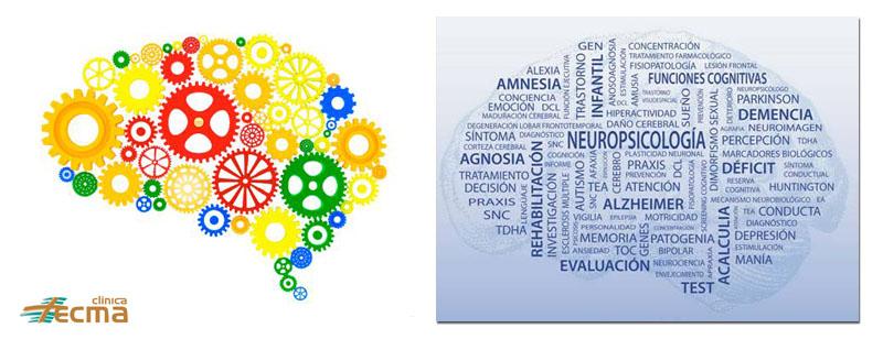 Nuevo servicio en clinica Tecma, Neuropsicología Clínica